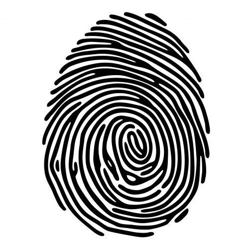 fingerpring access for biometric locks