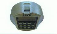 Biometric locking system